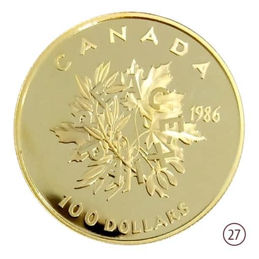 100 dollari canada
